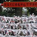 みくじ掛,皆中稲荷神社,新大久保〈著作権フリー無料画像〉Free Stock Photos