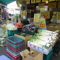 野菜,果物,八百屋〈著作権フリー画像〉Free Stock Photos