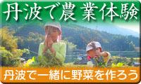 丹波で農業体験