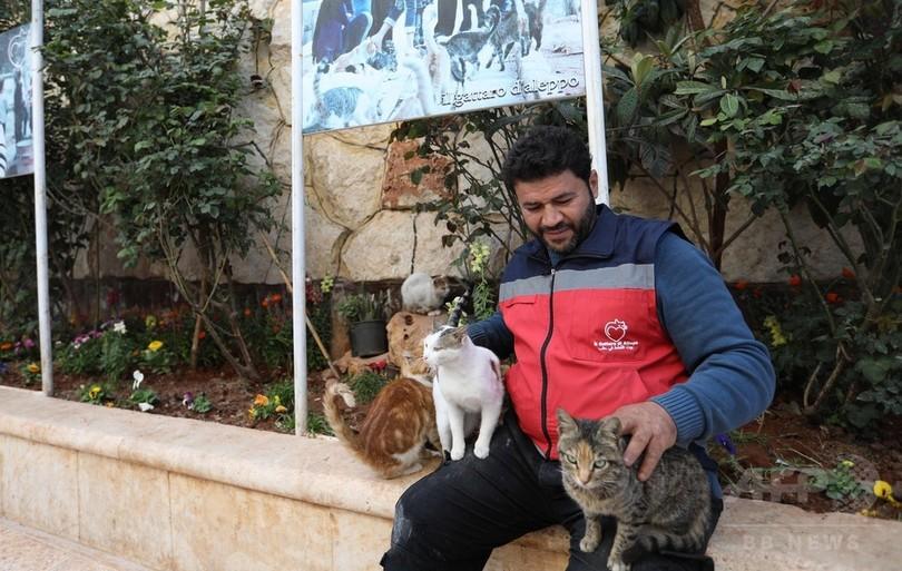 戦乱のシリアで「アレッポの猫好き」が始めた動物病院