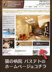 動物病院 名古屋 中区|名古屋で猫専門の動物病院を探すならバステトキャットクリニック