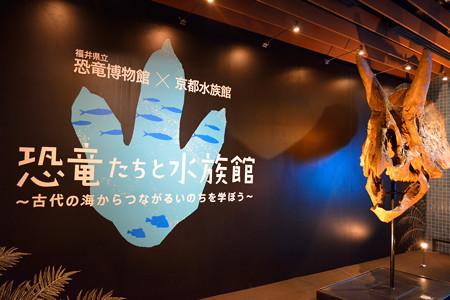 20140816 京都水族館&大 0004