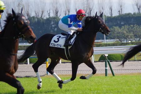 アプルーヴァル 返し馬