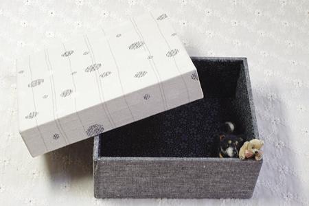 箱の全体像