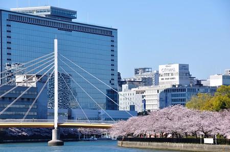 OMMビルと川崎橋とさくら