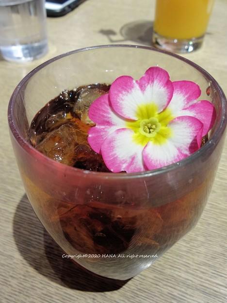 ロビンの金盞花(カンデュラ)ブルーベリーティー