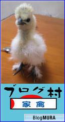 にほんブログ村 鳥ブログ ニワトリ・家禽へ