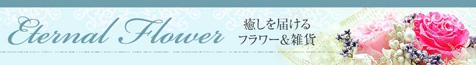 banner_L_20110607205449.jpg
