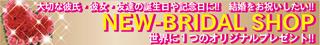 blog_2010_11_3-2.jpg
