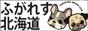 ふがれす北海道地区ブログ