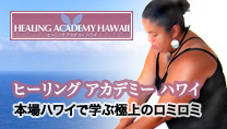 「ヒーリングアカデミーハワイ」banner