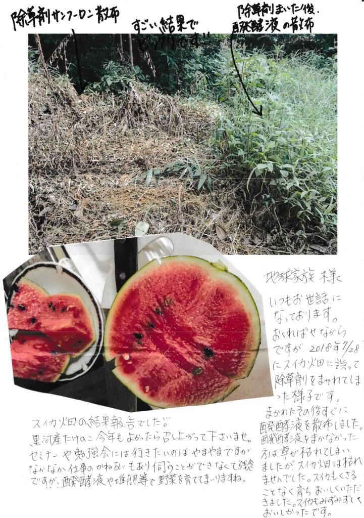 除草剤を醗酵液で中和