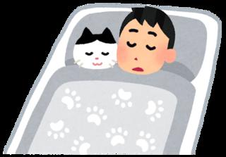 pet_neko_sleep.png