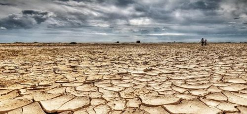 south-african-drought