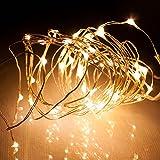 電光ホーム LEDジュエリーライト 5m50球 シャンパンゴールド kjl-5m-1gl 乾電...