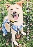 家族の愛犬から地域へ── もか吉、ボランティア犬になる。