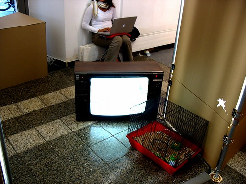 girl,tv,rat cage