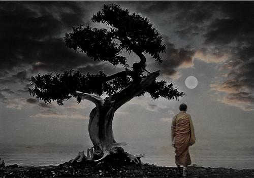 [フリー画像] グラフィックス, フォトアート, 人と風景, 月, 樹木, 僧侶・お坊さん, 201004210100