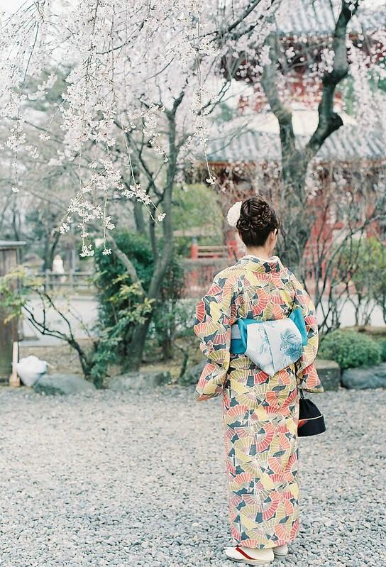 日本の春を楽しむ 002
