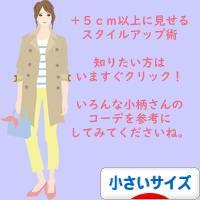 にほんブログ村 ファッションブログ 小さいサイズへ