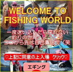 にほんブログ村 釣りブログ エギングへ