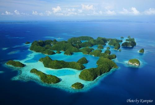 パラオ ヘリコプターで空撮。 <br />パラオの名所を空から眺める。<br />セブンティ アイランド(ズ)、ドルフィン パシフィック、ミルキーウェイ、ロングビーチ、ジェリーフィッシュレイク、<br />ナチュラルアーチ、ロックアイランド<br />--------------<br />Palau Helicopters<br />Seventy Islands / Dolphins Pasific / Milky Way / Long Beach / Jellyfish Lake / <br />Natural Arch / Rock Islands<br /><br />~~~<br /><br />パラオといえばダイバー天国。<br />しかし、我が家はノンダイバー。。<br />やりたいやりたいと思っているうちに何年も経ってしまった。<br /><br />旅行の都度、「一人でやってきなよ」という妻。<br />というのは、10年前の新婚旅行、タヒチのモーレア島での挙式後、<br />シュノーケルで足がつり、死にかけたからであろう。<br />シュノーケル、マスクをつけているので、足がつっても死なないのだが、<br />目の前で沈んでいく妻をみて思わず笑ってしまった私。<br />いまだに「貴方は笑っていた」といってネに持っている妻。<br />「独りでどうぞ」その言葉を真に受け、一人でやると家庭不和になるのは想像がつく。<br /><br />で、息子が今回の旅行でシュノーケルが驚くほど上達した。<br />まだ、ライフジャケットが必要だが、必要無くなるのもあっという間だろう。<br /><br />さあ、妻よ。昔の悪夢を振り払って家族でダイビングを始めよう。<br /><br />「一人でやってきていいよ」。。<br /><br />・・・<br /><br />だけど、パラオはダイビング以外にも見所、いろんなアクティビティが揃ってます。<br />そこで、 今日の選択はパラオの名所の空撮です。<br /><br />以前に見た、パラオの代表的名所、セブンティアイランドの空撮写真。<br />マッシュルームのような島々。<br />セブンティとあるが実際には40程度のロックアイランド。<br />タイマイの産卵場所もあり、保護された地域。<br />人の上陸はおろか、船舶の航行も許可なしでは出来ないので、<br />一般の人々が訪れることは出来ません。<br /><br />2007年より開始されたヘリコプターによる遊覧飛行。<br />現在3つのコースがあります。<br /><br />●ミルキーウェイ上空まで 10~15分 $79/1人<br />●ジェリーフィッシュレイク上空まで 30~45分 $259/1人<br />●セブンティーンアイランド上空まで 40~50分 $319/1人<br /><br />こなれていないか、まだ価格が高い。。<br /><br /><br />パラオ ロイヤルリゾートにほど近いビルにオフィスがあります。<br />ヘリポートらしきものが見当たらないが、その屋上にありました。<br />4人乗りの小型ヘリコプター。パイロットがいるので、お客3人で満席です。<br /><br />私のカメラ機材を見たパイロット。<br />「お前、フォトグラファーか?」<br />プロのカメラマンか?と聞かれたわけではないので、<br />「まぁ、そんなところだ」<br />「そうか、じゃ、ドア外すか?」<br />「え?え?あ、お願いします。。。」<br /><br />驚くほど簡単にドアが外れた。<br /><br />家族三人、乗り込むと同時に会話用にヘッドセットを付け、ローターが回転。<br />爆音を響かせながら、さあ離陸です!<br /><br />