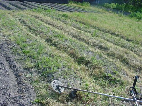 草刈機の利用