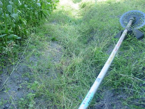 草刈機を使用