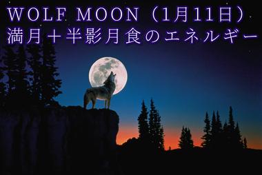満月のエネルギー(1月11日)