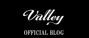 Valley blog