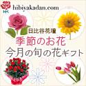 日比谷花壇おすすめ今月の旬の花