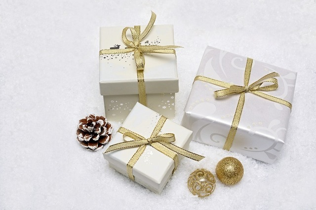 christmas-gift-3019973_960_720.jpg