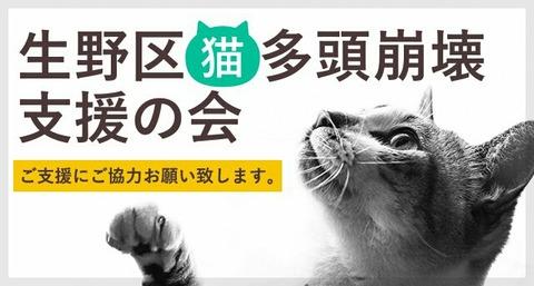 生野区猫多頭崩壊支援の会