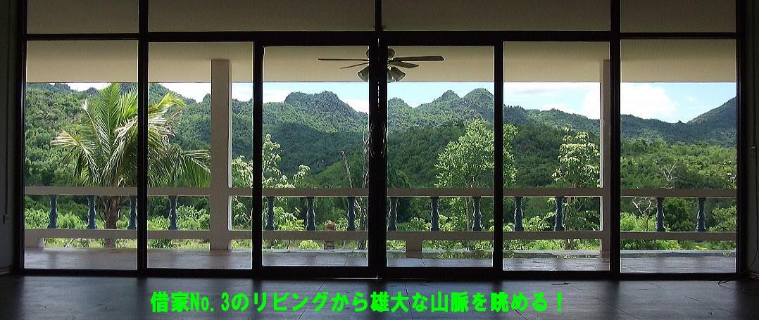 syakuya3