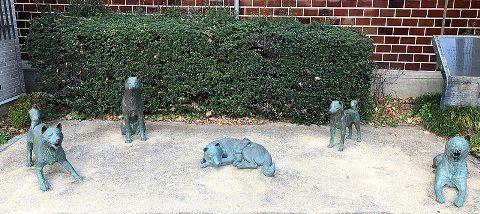800px-中野お囲いの犬の像2