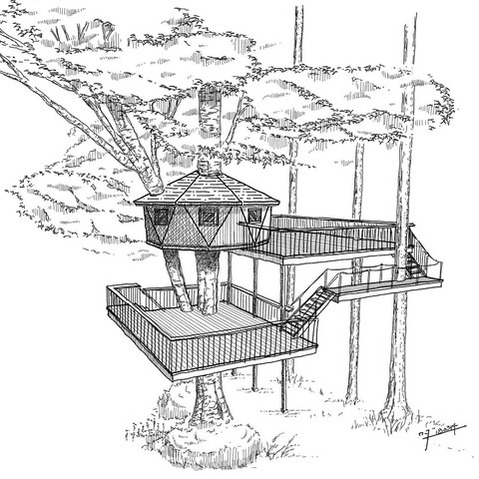 ツリーハウス案3