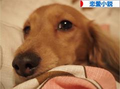 にほんブログ村 小説ブログ 恋愛小説(純愛)へ
