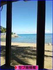 にほんブログ村 海外生活ブログ セブ島情報へ