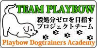 チームプレイボゥ(殺処分ゼロを目指すドッグトレーナースクールのプロジェクト)