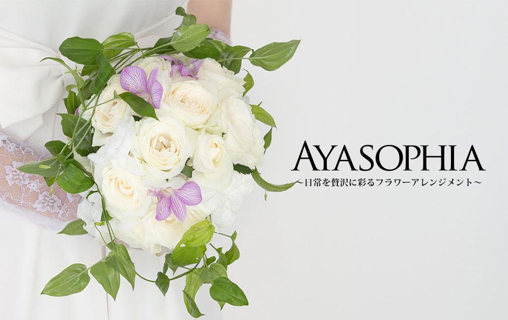 AYASOPHIA