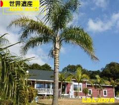 にほんブログ村 旅行ブログ 世界遺産へ