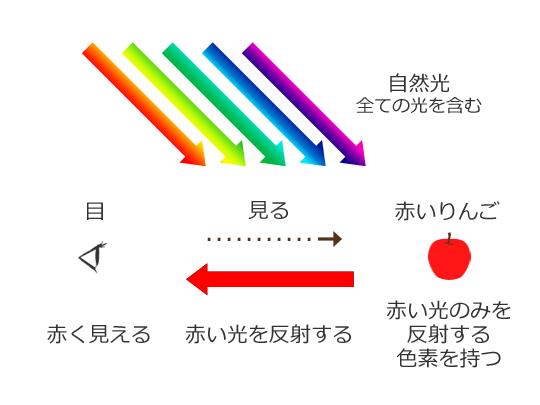 色 認識 光 に対する画像結果