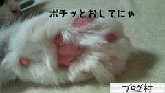 【新宿 マインドブロックバスター】poti04