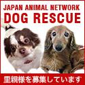 保護犬の里親募集サイト ドッグレスキュー