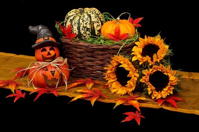 autumn 20461 640