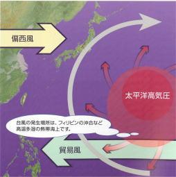 「台風  偏西風無料画像」の画像検索結果