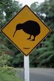 キウイの交通標識