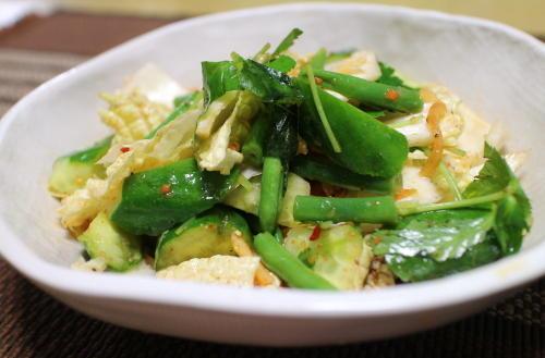 今日のキムチ料理レシピ:白菜のピリ辛サラダ