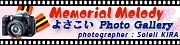 よさこい Photo Gallery ~ Memorial Melody ~