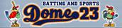 バッティングandスポーツ ドーム23